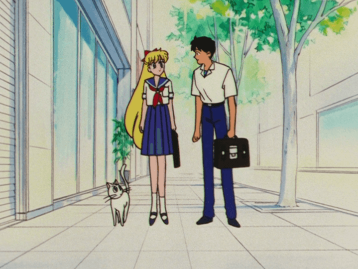 Sailor Moon S Complete Series Review
